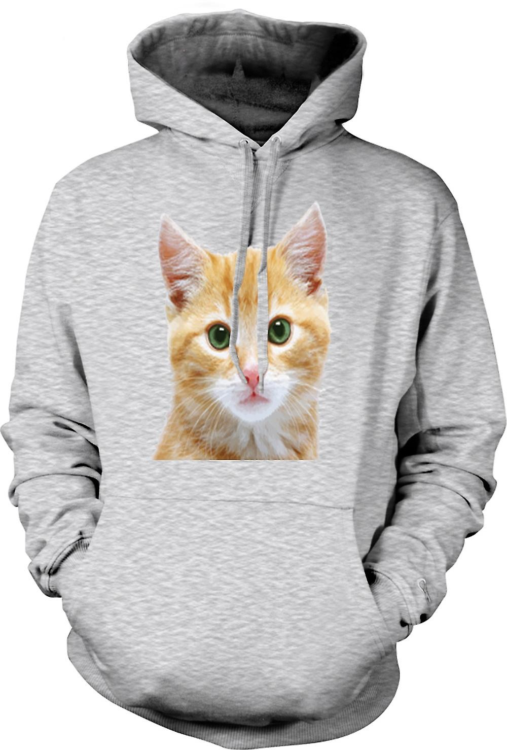 Mens Hoodie - Cute Red Kitten Face Portrait