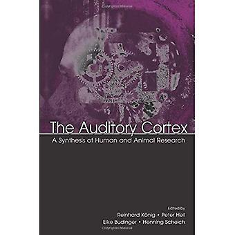 Den auditive Cortex: En syntese af menneskers og dyrs forskning