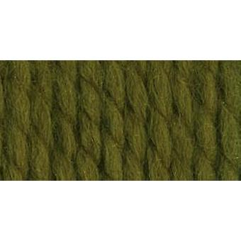 Wool Ease Thick & Quick Yarn Cilantro 640 178