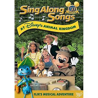 Fliks musikalske eventyr [DVD] USA importerer