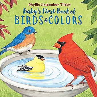 Baby's First Book of Birds and Colors by Phyllis Limbacher Tildes - 9