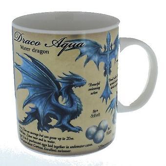 Water Dragon Mug in a Box