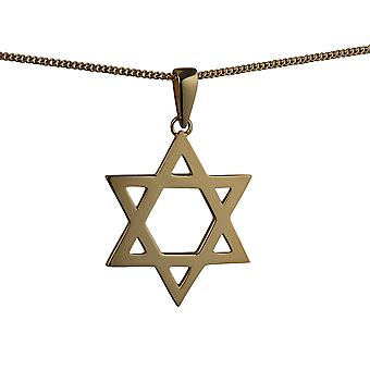9ct Gold 36x31mm plain Star of David Pendant with a curb Chain 16 inches Only Suitable for Children
