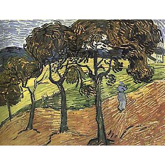 Пейзаж с деревом и цифры, Винсент Ван Гог, 49,9 x 65,4 см