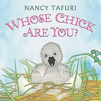 Whose Chick Are You? [Board book]