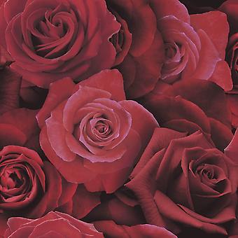 Arthouse Austin Rose patroon behang bloemen bloem Petal fotografische motief 675600