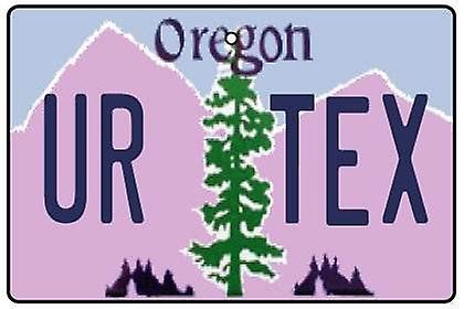 Personalised Oregon Numberplate Car Air Freshener
