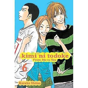 Kimi ni Todoke Vol 6