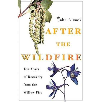 After the Wildfire: Ten Years of Recovery from the� Willow Fire