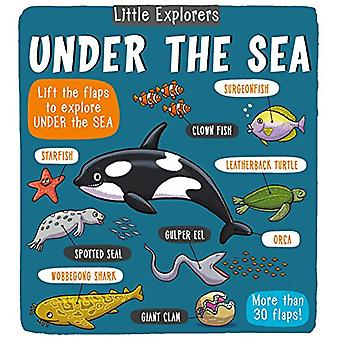 Little Explorers - Under the Sea by Little Bee Books - 9781499806953 B