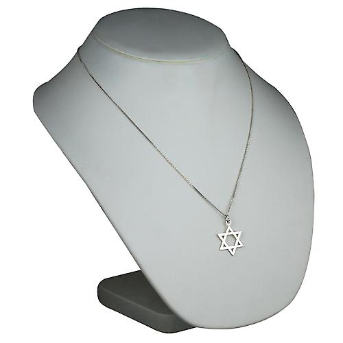 Silver 23x20mm plain Star of David Pendant with a curb Chain 22 inches