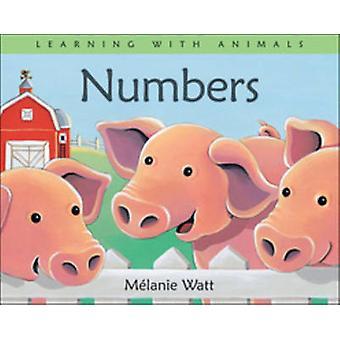 Numbers by Melanie Watt - 9781553378310 Book