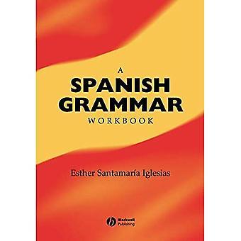 A Spanish Grammar Workbook (Blackwell Reference Grammars)