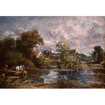 The White horse, John Constable, 50x40cm
