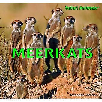 Stokstaartjes (Safari dieren)