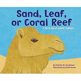 Areia, folha ou recifes de Coral: Um livro sobre os Habitats de animais