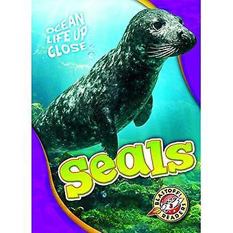 Seals (Ocean Life Up Close)