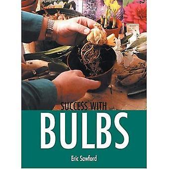 Success with Bulbs