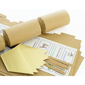 8 Natural Brown Kraft Recycled Make & Fill Your Own Cracker Kit