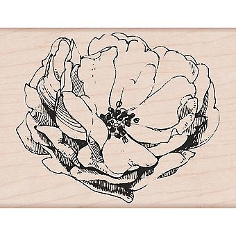 Hero Arts Mounted Rubber Stamp 4.25
