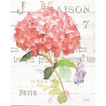 Maison des Fleurs VI Poster Print by Danhui Nai