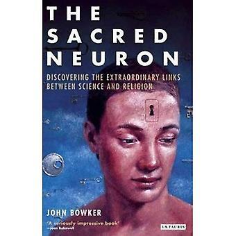 Das Heilige Neuron: Außergewöhnliche neue Entdeckungen, die Verknüpfung von Wissenschaft und Religion