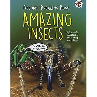 Amazing Insects - Record-Breaking Bugs