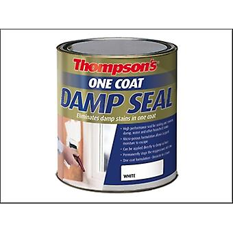 Ronseal Thompsons une couche humide joint peinture 750ml