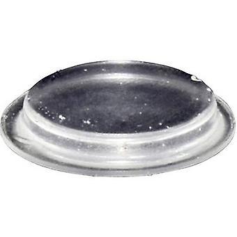 TOOLCRAFT PD2204C pé circular, auto-adesivo transparente (Ø x H) 19,7 x 3 mm 1 computador (es)