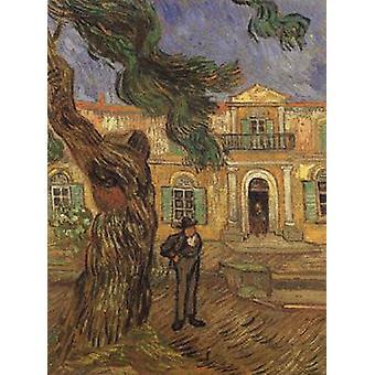 Pine Trees with Figure in the Garden of Saint-Paul, Vincent Van Gogh