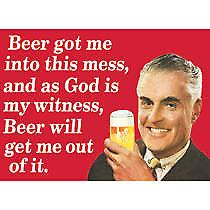 Beer Got Me Into This Mess funny fridge magnet   (hb)