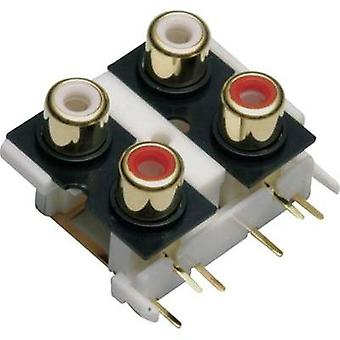 RCA connector Socket, vertical vertical Number of pins: 4 Gold, Red, White BKL Electronic 072385 1 pc(s)
