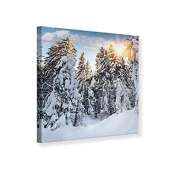 Canvas Print Fir In Snow