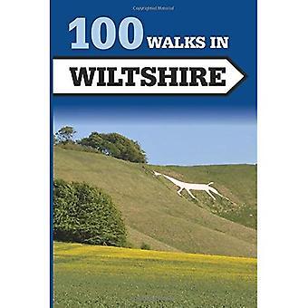 100 paseos en Wiltshire