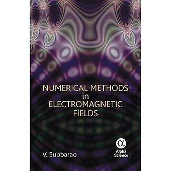 Numeriska metoder inom elektromagnetiska fält