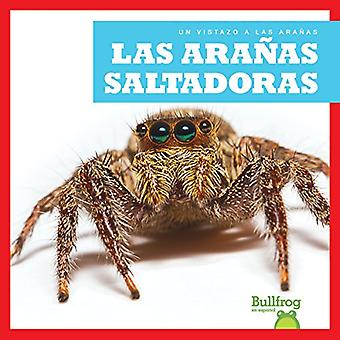 Las Aranas Saltadoras (araignées sauteuses)