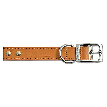 Heritage Leather Studded Collar Tan 16mm X28-36cm Sz 3