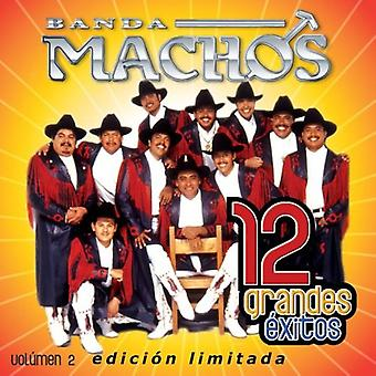 Banda Machoer - Banda Machoer: Vol. 2-12 Grandes Exitos [CD] USA importerer