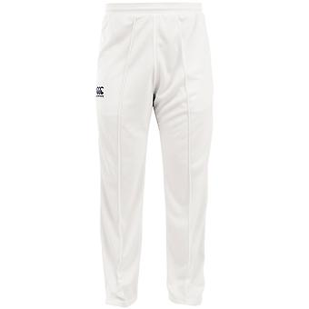 Canterbury Mens CCC geritste Polyester Cricket Pants / Trousers