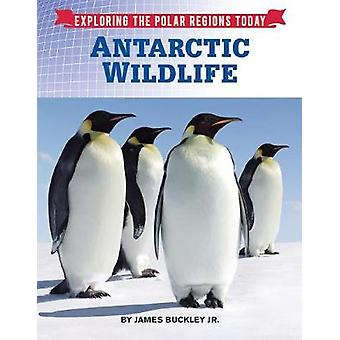 Antarctic Wildlife by James Buckley Jr - 9781422238646 Book