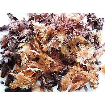 10g Mixed Brown Feathers for Crafts | Scrapbooking Card Making Embellishments