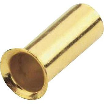 Ferrules 1x 4 mm² Sinuslive gold-plated