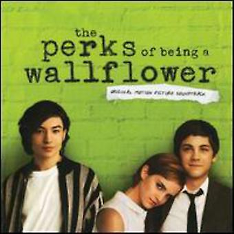 Various Artists - Perks bycia importu USA Wallflower [Vinyl]