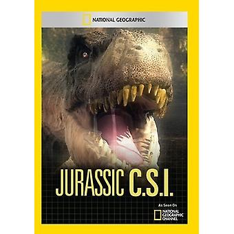 Jurassic CSI [DVD] USA import