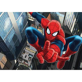 Spiderman Big Decoration Mural