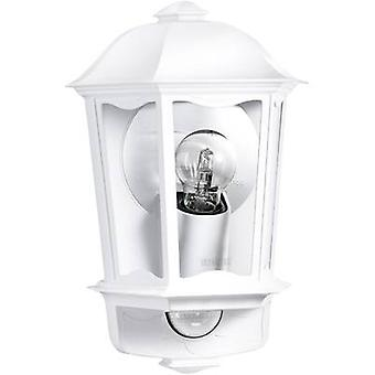 Outdoor wall light (+ motion detector) Energy-saving bulb, LED E27 100 W