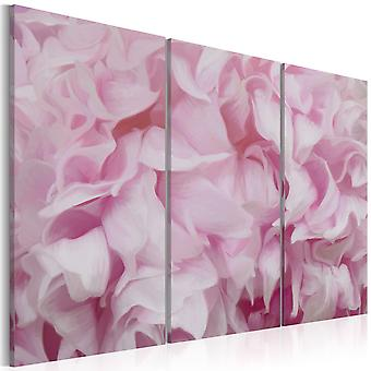 Billede - Azalea i pink