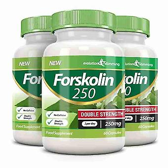 Forskolin 250 Double Strength 250mg 60 Weight Loss Capsules - 180 Capsules - Fat Burner and Metabolism Booster - Evolution Slimming