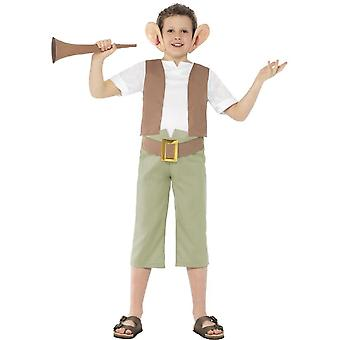 Roald Dahl BFG Costume, Green, with Top, Trousers, Ear Headband & Horn