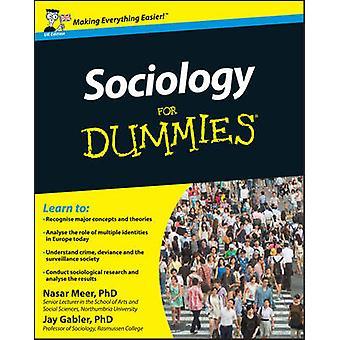 Sociology For Dummies (UK ed) by Nasar Meer - Jay Gabler - 9781119991